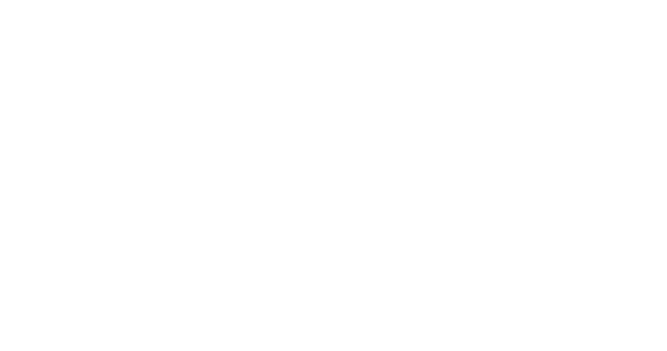 White Tiger | Digital Partner